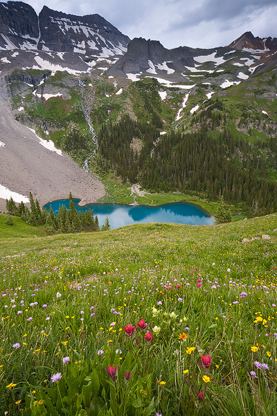 Summer Wildflowers Above Lower Blue Lake
